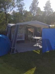 camp let 2